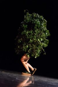 I Am Tree - Irina Lorez